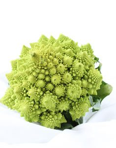 Natural Holistic Vet broccoli